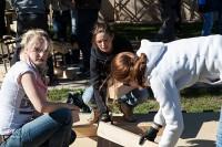 Vöslauer Nachhaltigkeitstag 2013: Mitarbeiter engagierten sich, um das Gelände rund um das Caritas Haus Sarah in Neudörfl für minderjährige Flüchtlinge wieder in Schuss zu bringen